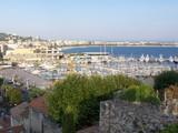 Voiliers dans le port de Cannes, France poster