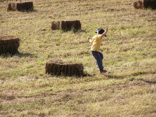 1495  - Enfant jouant à la ferme