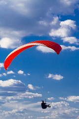 Paraglider - free-flying