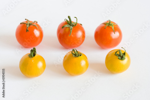 red and yellow tomatos in rows