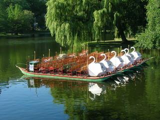 Swan Boats, Boston.