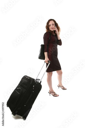 poster of Woman Traveler