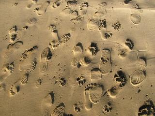 Sand Feet 02