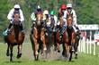 horse racing - 3989120