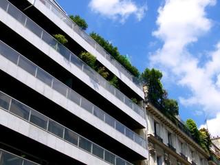 Terssaes arborées au dernier étage, Paris