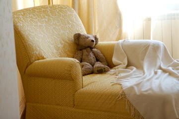 toy bear in sofa