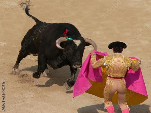 Staande foto Stierenvechten corrida nimes