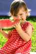 Quadro Girl eating water-melon