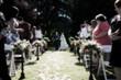 Wedding - 4006727