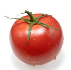 Fresh tomato, isolated