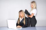 Business Women poster