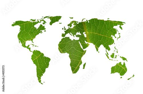 world map leaf - 4013173