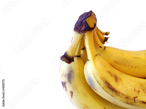 banana bunch with clipping path
