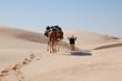 caravan in desert Sahara