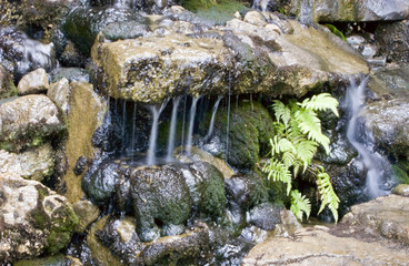 A lovely Little Waterfall