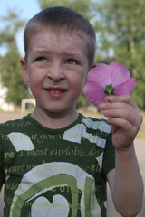 The boy holds a pink flower in the afternoon