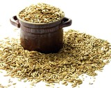 oat corn grains poster