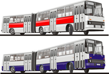 Vector City Bus Articulated, Isolated