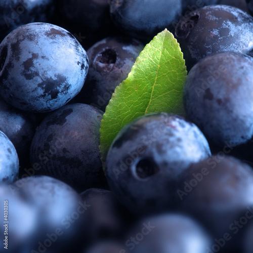 Macro shot of wet fresh blueberry