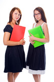 Young business women consalting poster