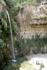 desert oasis in the dead sea region