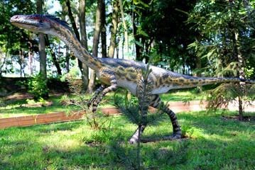 Coelophysis bauri, Coelophys,  dinosaurs series