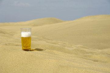 Fresh beer in desert