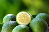 Green and acid lemon . poster