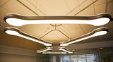 Fluorescent overhead lamp in office   poster