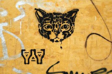 catsy.