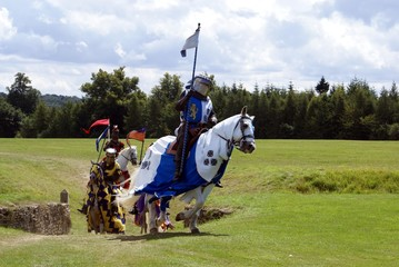 Knights riding horses holding flags