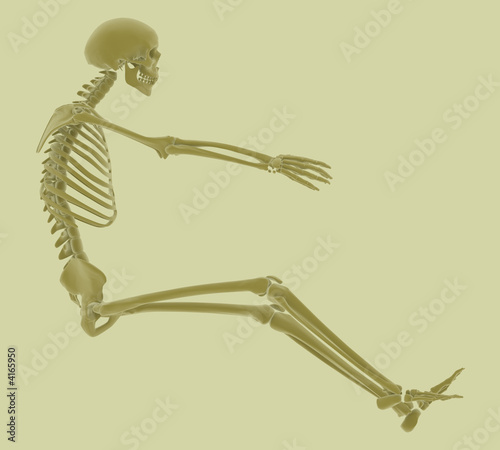 High resolution rendering of a skeleton in driving position.