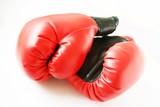 Fototapety rote boxhandschuhe