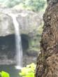 famous rainbow falls big island, hawaii