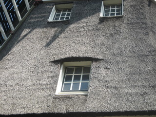 Closeup of Thatched Roof on Windmill