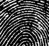 Fingerprint crop
