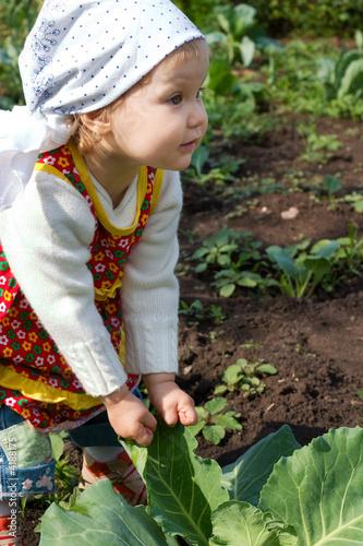 young truck farmer
