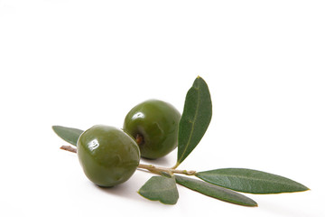 olive 45