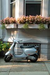 Evening Flower baskets