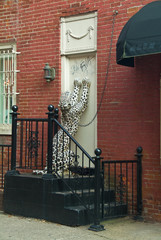 White Panther in Philadelphia on side door of building