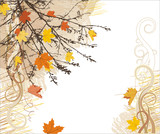 Fototapety Autumn vector background  and corner