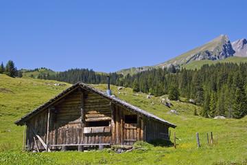 Heuhütte im Berner Oberland