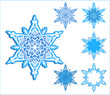 vector snowflakes / One form and 5 variants for use