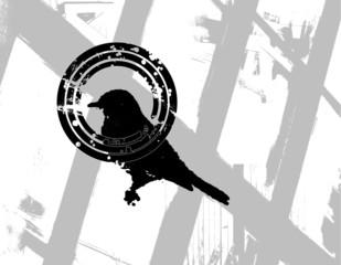 Kill Bird