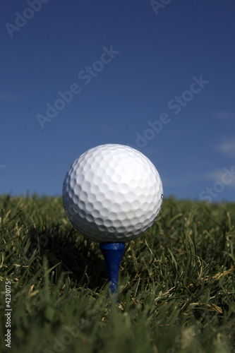 Golf Ball & Blue Tee