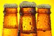Leinwandbild Motiv Bottles of beer