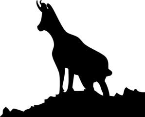 Logo chamois