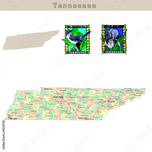 USA states series: Tennessee. Political map with counties
