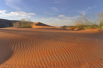 Striped dunes.