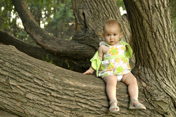 Child on a tree